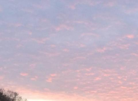 Beau  ciel  rose