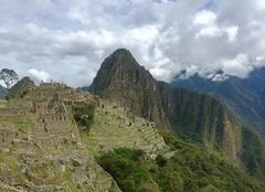 Faune/Flore Cuzco Machu picchu la citée perdue - cuzco Perou