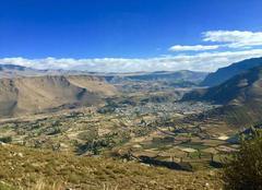 Faune/Flore Pisac Cañon de colca - cabanaconde au Pérou