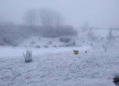 Neige Charrecey 71510 Sous la neige