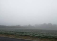 Brouillard Chavannes 18190 Brouillard