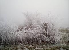Froid persistant toute la journée pas de dégel