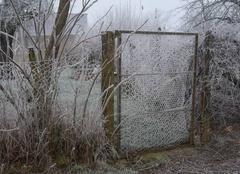 Froid Licheres-Pres-Aigremont 89800 L'hiver