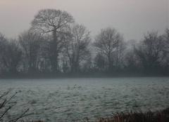 La campagne de Bricquebec sous le gel