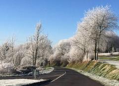 Givre, hiver 2016