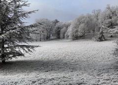 Neige en continu à sablé 72