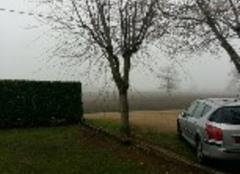 Brouillard à betaille