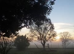 Coucher de soleil sur lever de brouillard