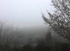 Climat Saint-Senoux 35580 La forêt