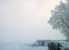 Froid Moliens 60220 Le début de la neige