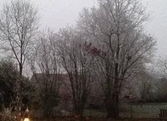 Un levé de jour hivernal