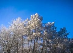 Froid Les Farges 24290 Un air de Sibérie