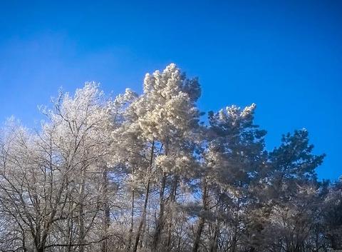 Un air de Sibérie