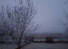 Brouillard Sars-Poteries 59216 Sars poteries