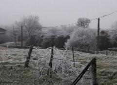 Froid Buzancy 08240 Bonne année des Ardennes