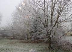 Brouillards givrants à GRANDLUP et FAY (02350)