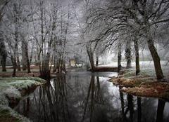 Froid Argent-sur-Sauldre 18410 Paysage givré