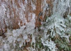 En pleine nature.... des sculptures de glace naturelles