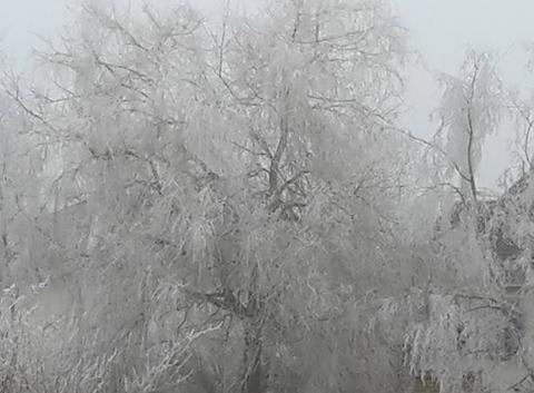 Un vrai hiver