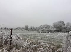 Un paysage hivernal