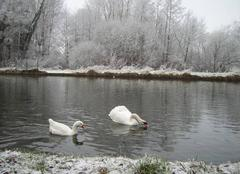 Neige Saint-Quentin 02100 Paysage hivernal