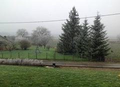 Premiers flocons de neige