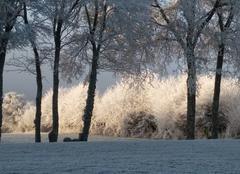 Climat Toucy 89130 Paysage magnifique sur Toucy ce 31 décembre 2027paysage magnifique sur Toucy, aux avenières, ce 31 décembre 2017