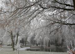 Grêle Marigny-le-Chatel 10350 Paysage glacé