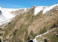 Faune/Flore Prats-de-Mollo-la-Preste 66230 Photo de montagne