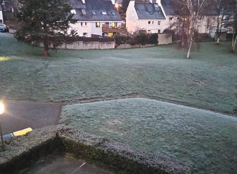 La gelée du matin