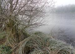 Froid Locqueltas 56390 Matin d'hiver
