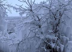 Un hiver rude sur les bords du lac Léman ??