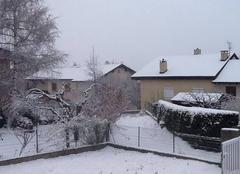 Légère chute de neige