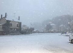 La neige tombe !