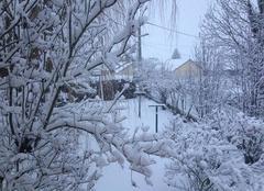 Neige à la tour du pin