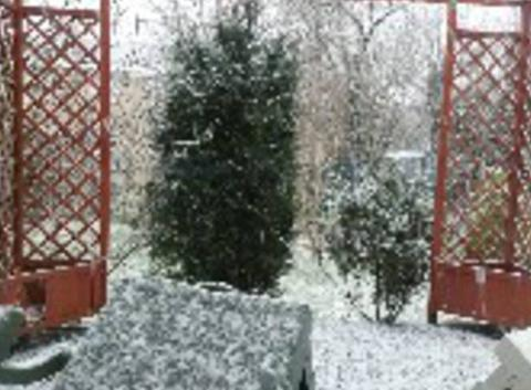 Fortes averse de neige