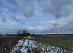 Nuages Oberhoffen-sur-Moder 67240 Ciel couvert