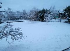 Neige Pralong 42600 Chutes de neige