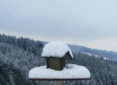 Nouvelle couche de neige