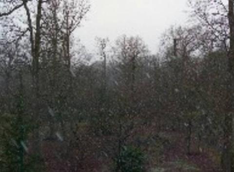 Neige à Jouy