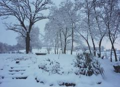 Ciel Saint-Cyr-les-Vignes 42210 Abondantes chutes de neige 14 et 15 janvier 2017