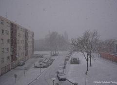 Neige en plaine d'Alsace