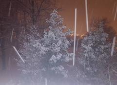 Neige janvier 2017