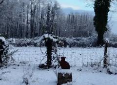 Neige dans le val de saone