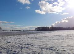 Soleil apres la neige