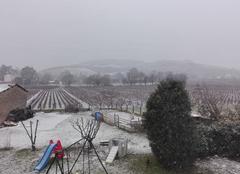 Neige dans le 69220