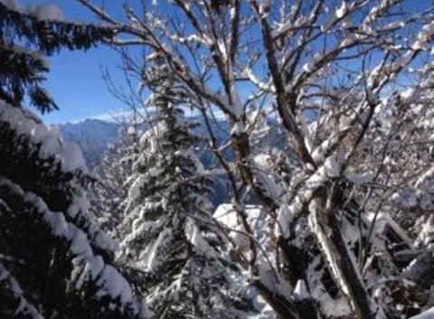 Les 2 Alpes sous le soleil