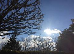 Soleil et bise glaciale cet après-midi