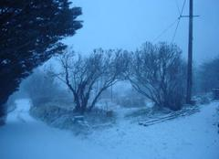 Neige Felines-sur-Rimandoule 26160 Tempete de neige dans la Drôme
