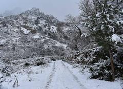Neige Calvi 20260 Calenzana, Corse
